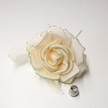 61/2 Ivory Green Edge Silk Rose